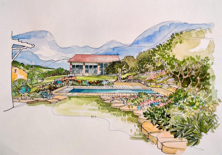 Dessin au crayon d'un projet d'aménagement. Vue d'ensemble d'un jardin dans lequel se trouve une allée gazonnée, une piscine aux contours en bois, et une composition florale et arboré tout autour du jardin.